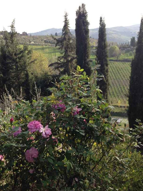 Florence and Chianti, Tuscany: A Renewal Experience